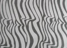 zebra-7033