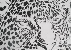 testa-di-leopardo